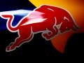 Presentazione Red Bull 2014