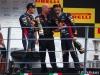 Sebastian Vettel - Campione del mondo F1 2013
