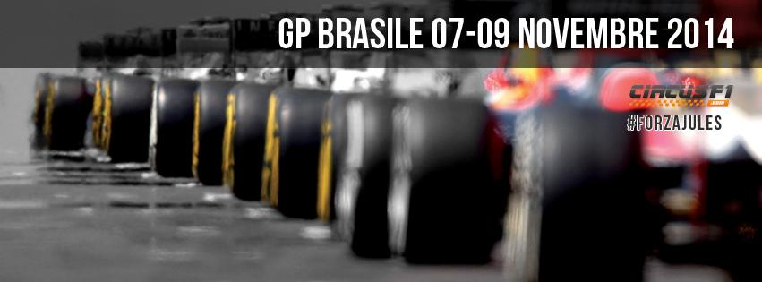 Gp Brasile F1 2014